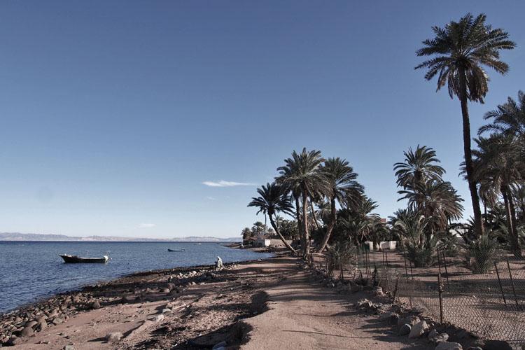 dyd-home-assalah-beach.jpg