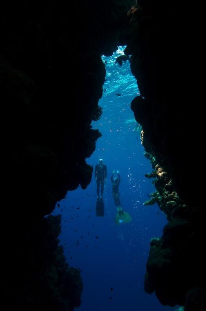 Diving Bells -- Photo: Dan Burton