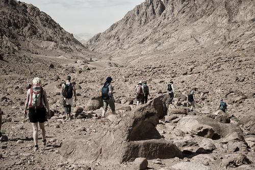 dyd-fd-fortnight-desert-trek.jpg