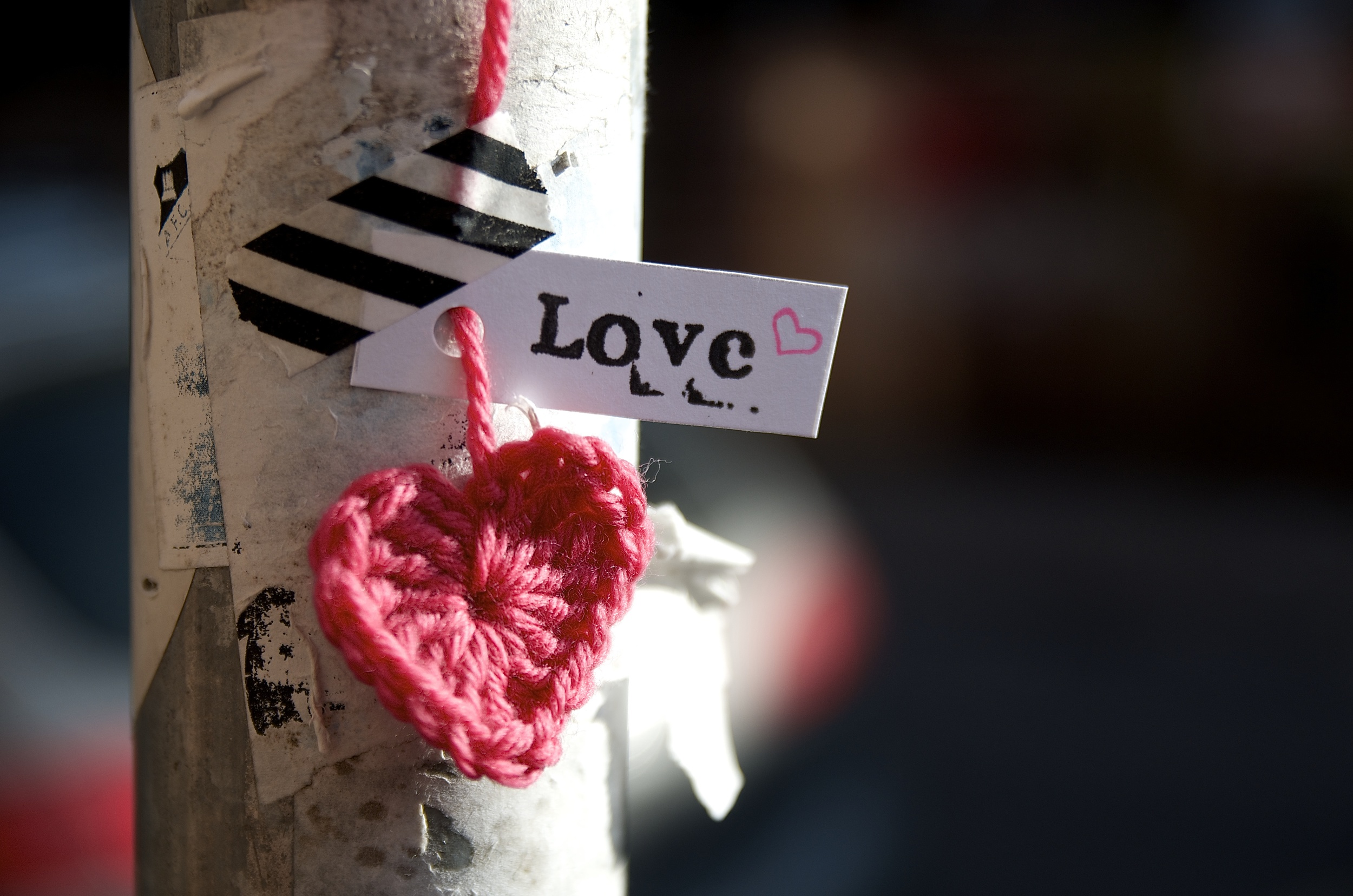 Late at night Mia yarnbombs her neighbourhood hanging knitted hearts from trees