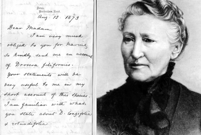 Scientist Mary Treat and a letter Darwin wrote to her.