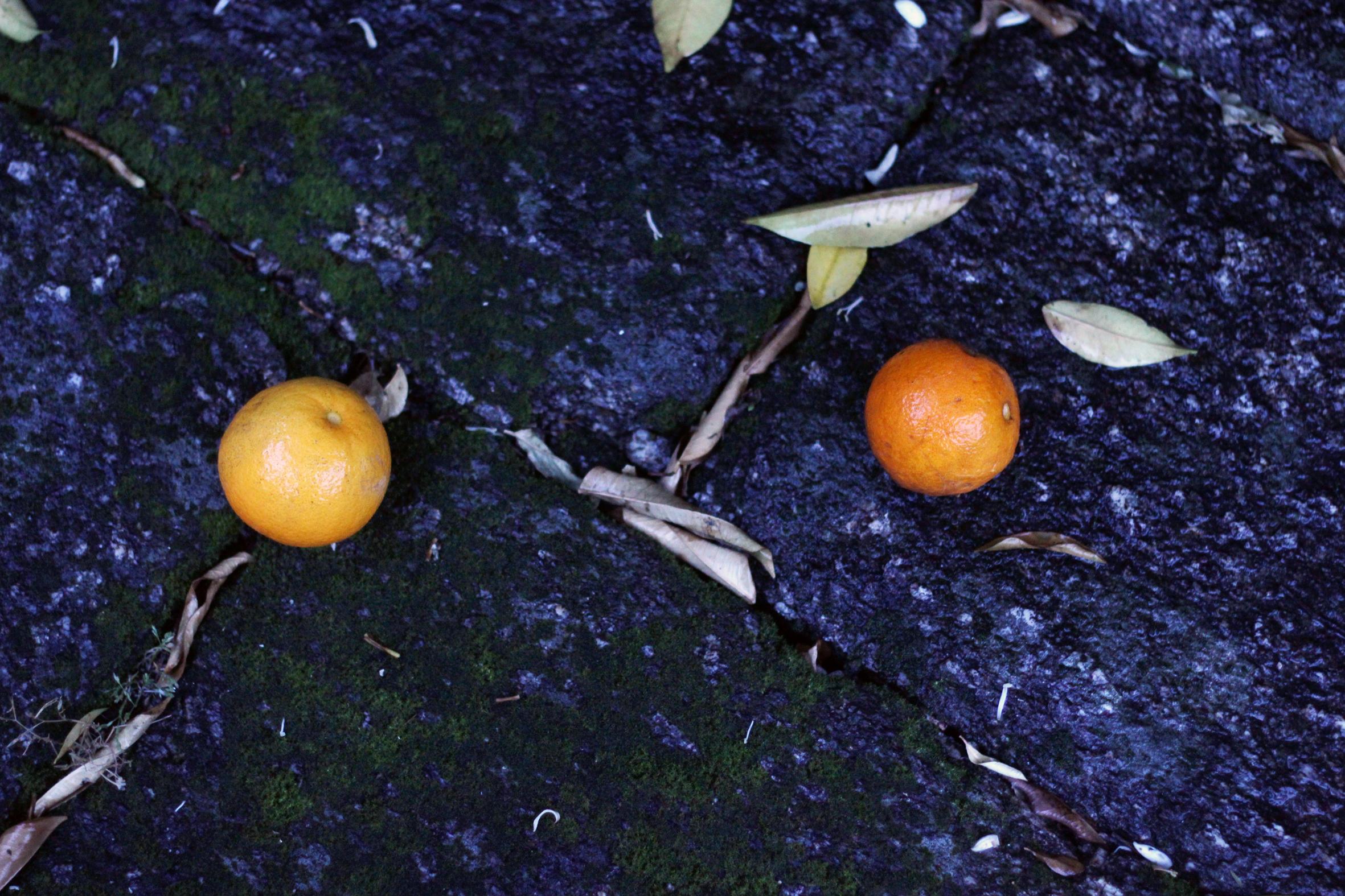 apelsin sten regn.jpg