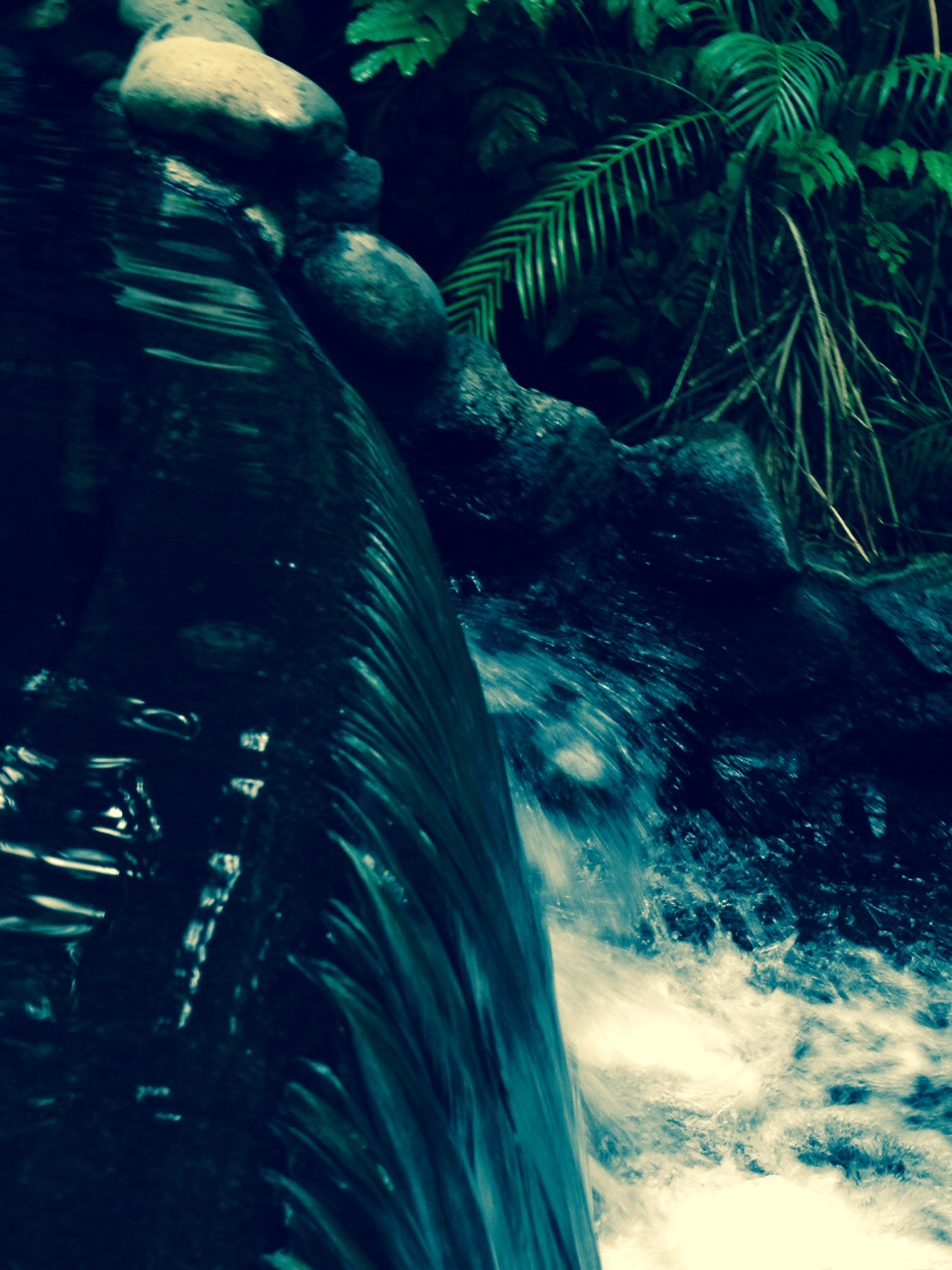 Hot Springs near the Arenal Volcano