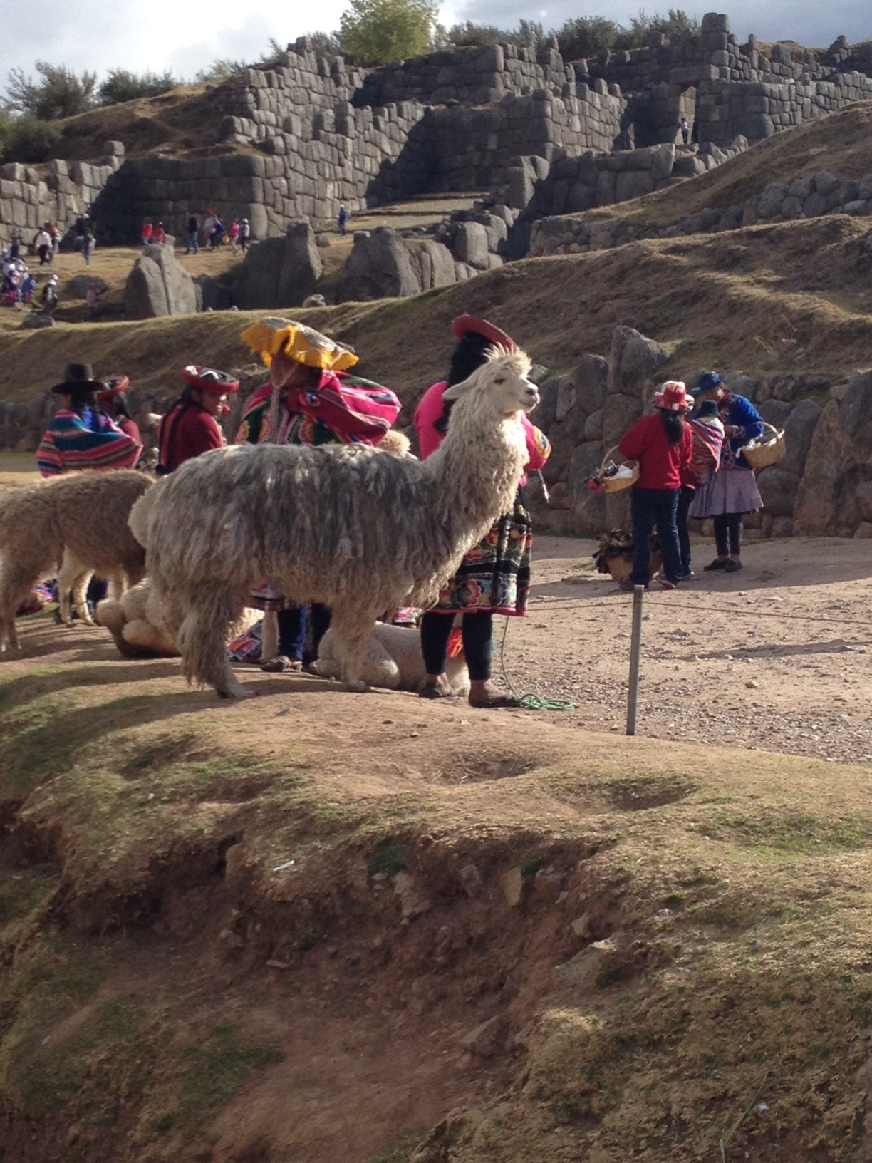 A bid farewell from an alpaca-mostly locals at the exit trying to get more money from tourists