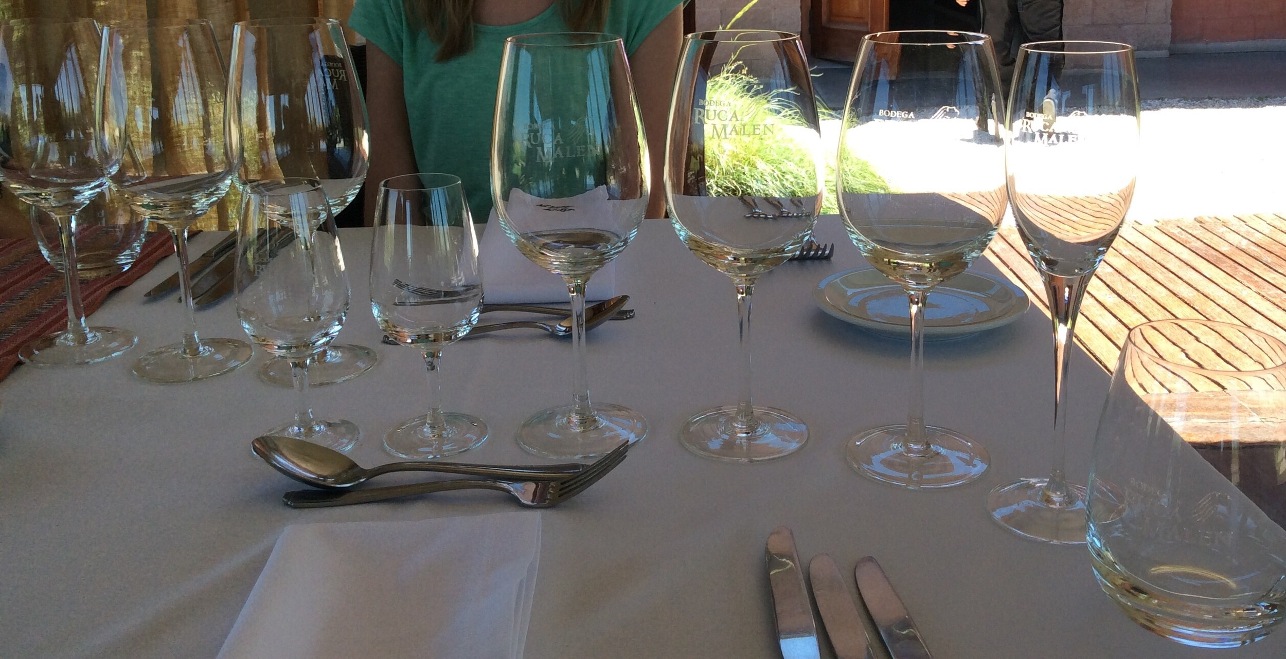 Ready for lunch wine pairing!