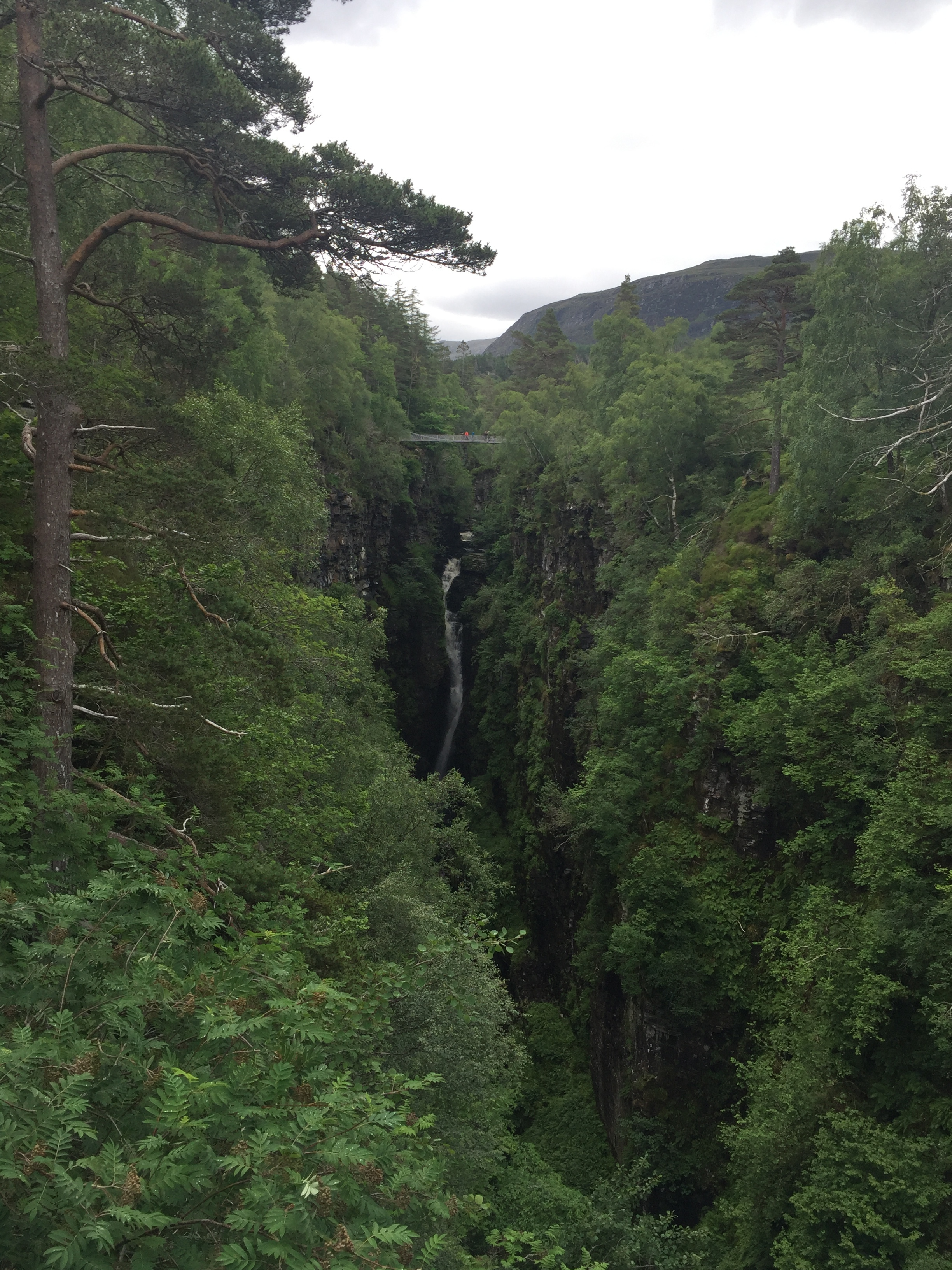 A view of the suspension bridge and the waterfall.