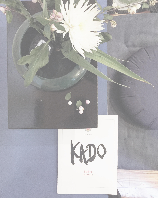 #myflowerstoday  #kado  #kadoikebana  #chrysanthemum  #mums