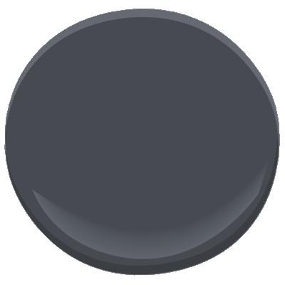 Baby Seal Black Paint.jpg