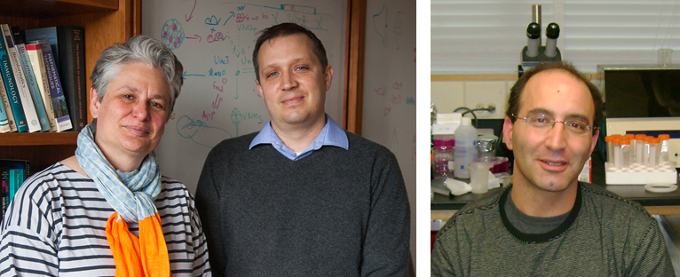 Catherine Dulac, Joseph Bergan and Yoram Ben-Shaul (Courtesy of Department of Molecular and Cellular Biology)