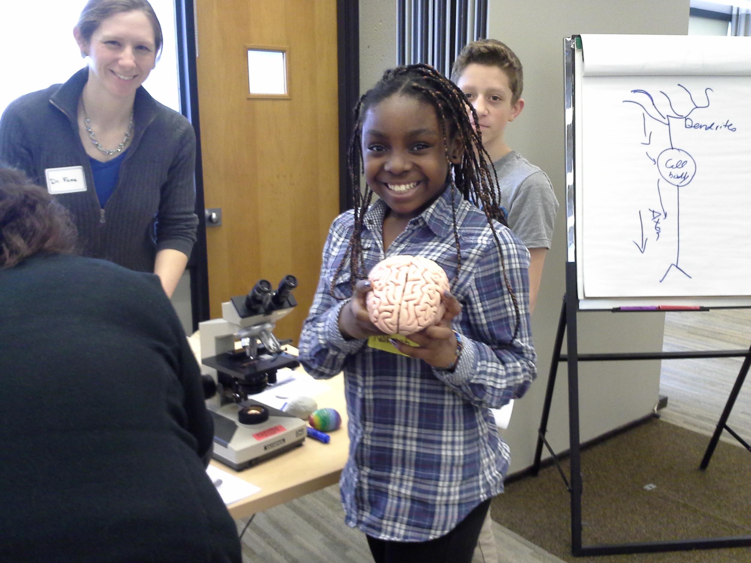 Brain Awareness Week 2013, visit from sixth graders from Salemwood School, Malden, MA