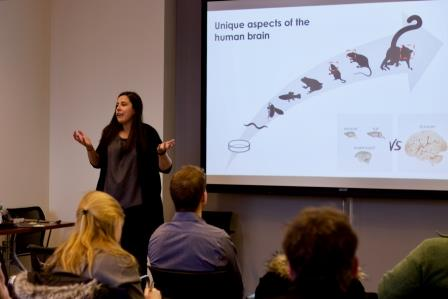 Bruna da Silveira Paulsen, PhD, Arlotta Lab gives a tour and further explanation of their findings
