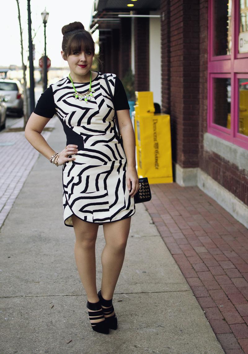 zebra-dress-1.jpg