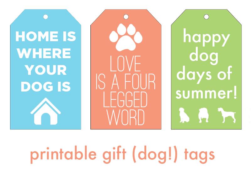 dog-tags-2.png