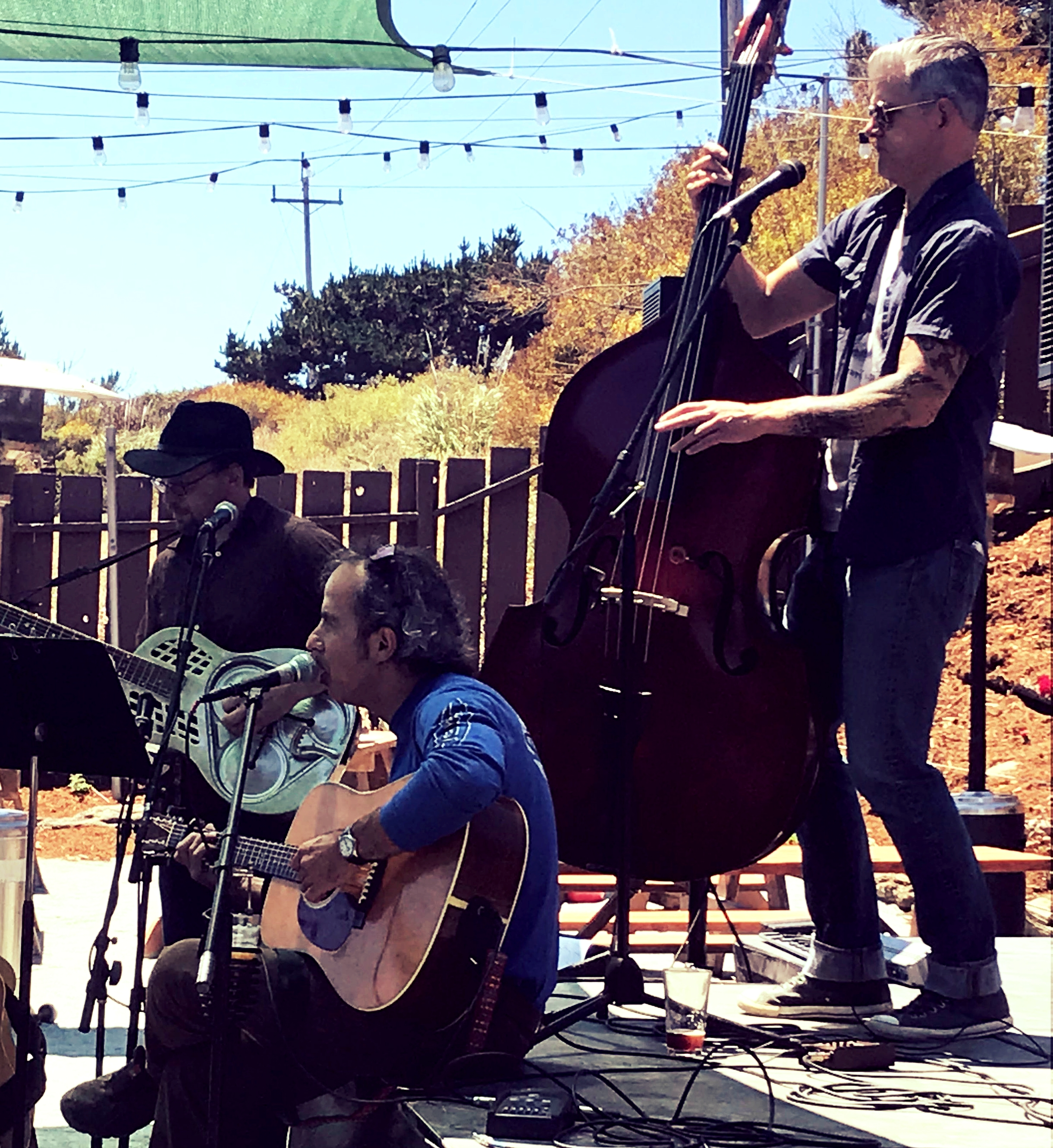 TASTE OUR LOCAL MUSIC SCENE,,AS ECLECTIC & COASTAL AS WE ARE! - FOLLOW US @HWY1BC #SLOWCOAST