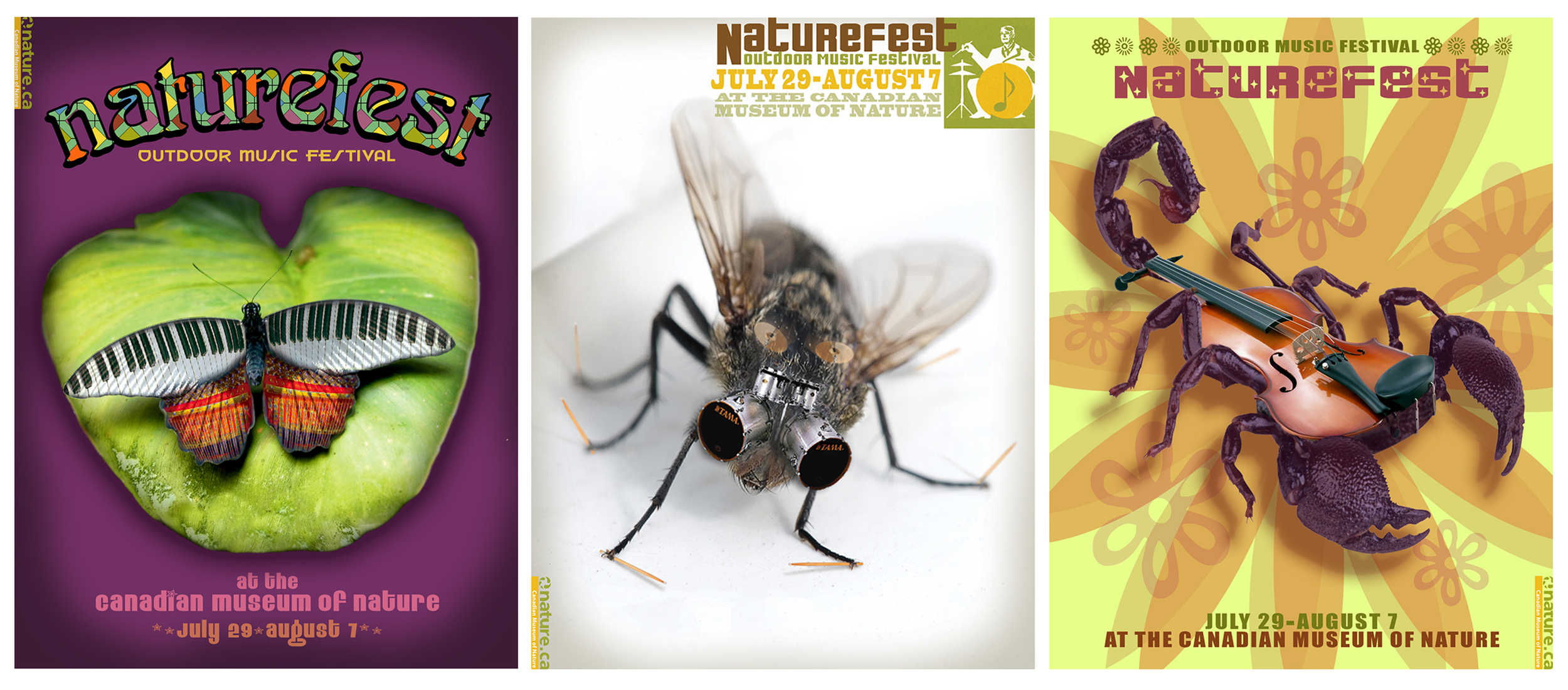 Series of concert posters promoting outdoor summer music festival at the Canadian Museum of Nature.