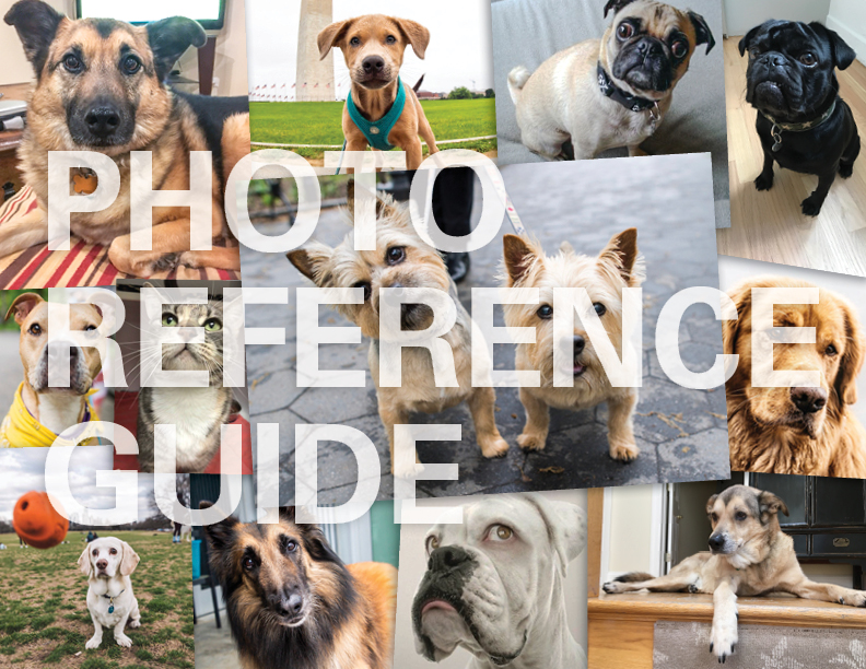 PhotoReferenceGuide_Cover.jpg