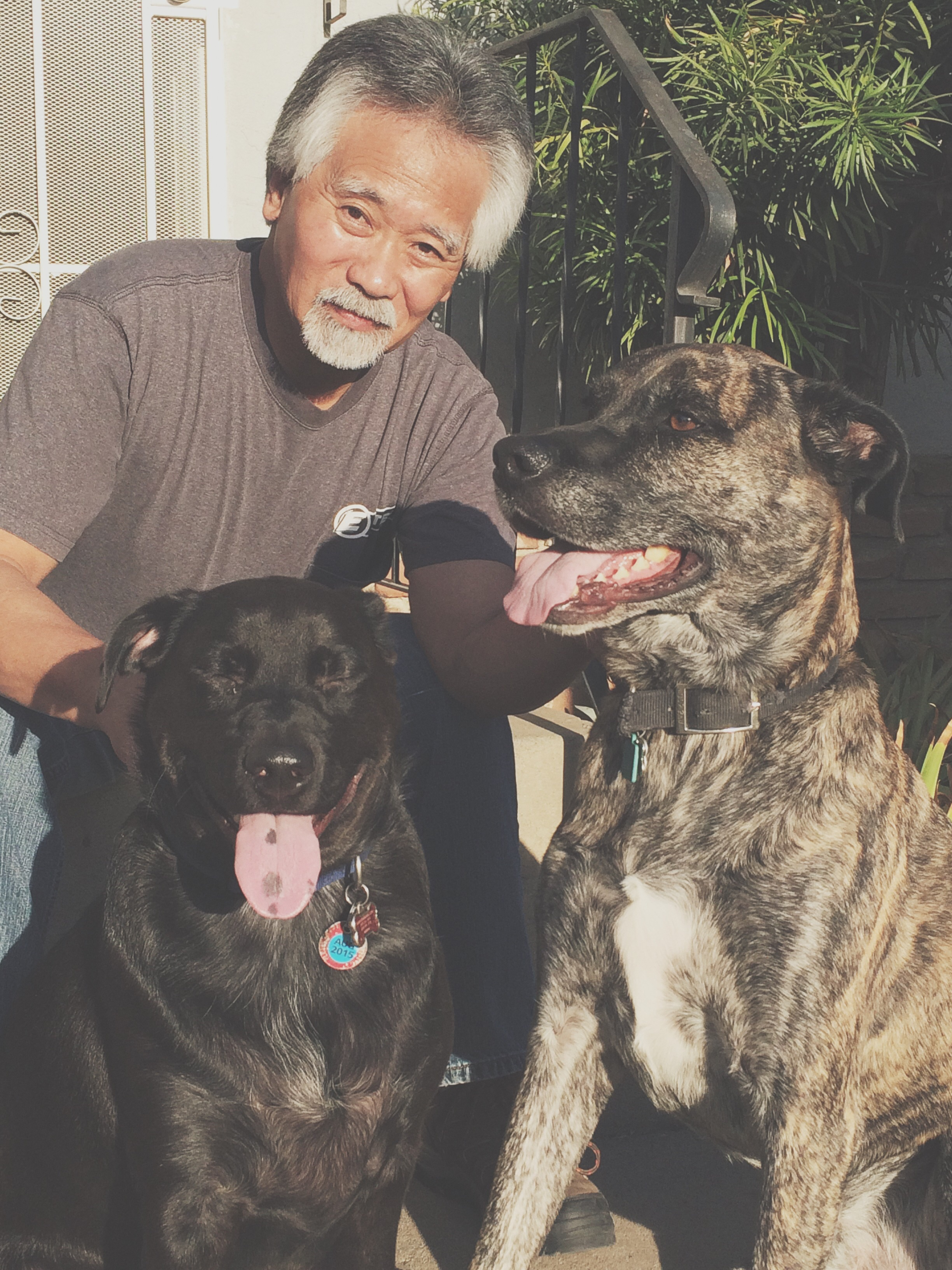 Dad with Toki and Alfie