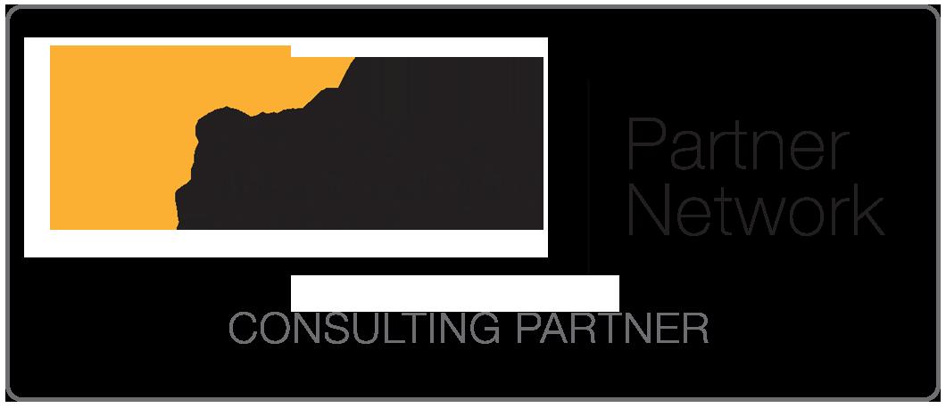 APN_Standard Consulting Partner.png