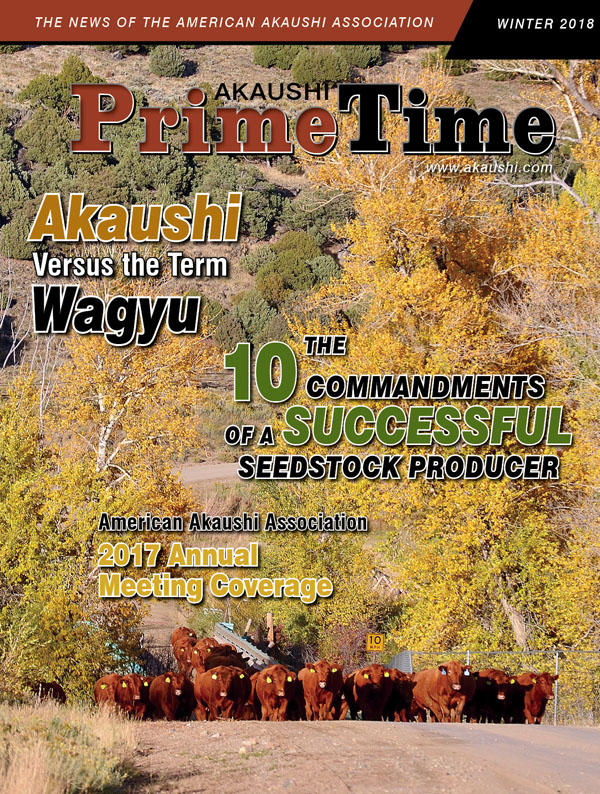 PTW18_Final-Cover.jpg
