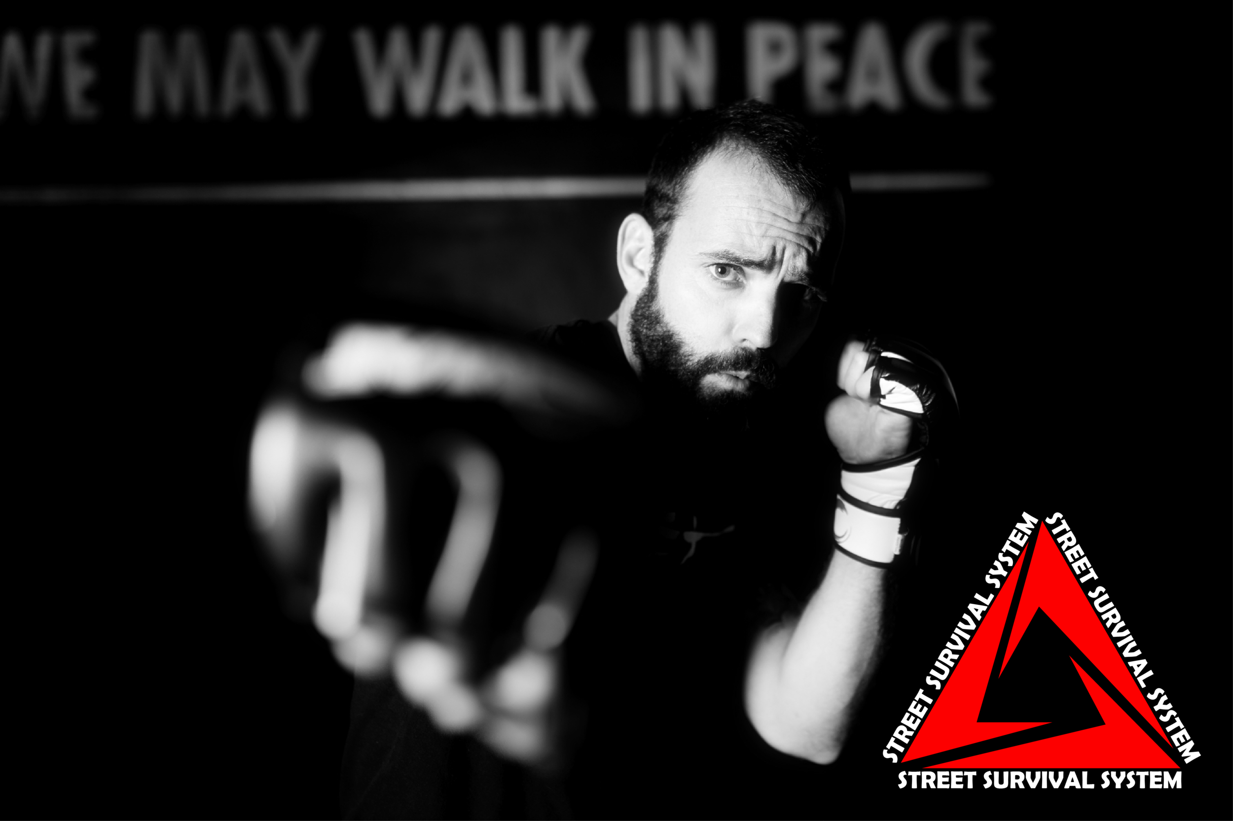 STREET SURVIVAL SYSTEM - MMA FOR SELF DEFENCE