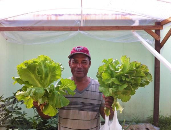 Lomwe, one of the Wellness Center staff, holds up lettuce we grew in our hydroponic gardens.
