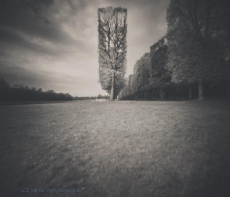 pinhole photograph at  Versailles , France (by  Kodiak Xyza )