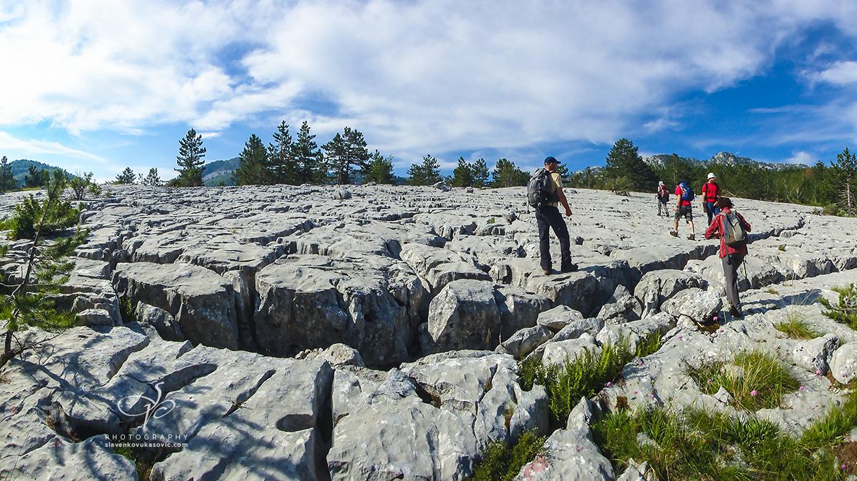 Stazom od Bijele gore ka Velikoj Jastrebici
