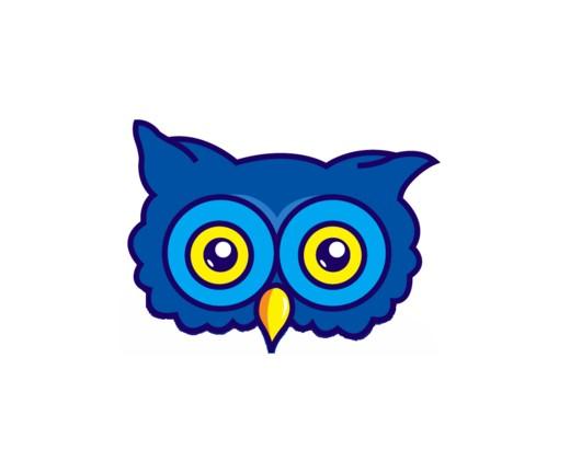 hoot eyes in color.jpg