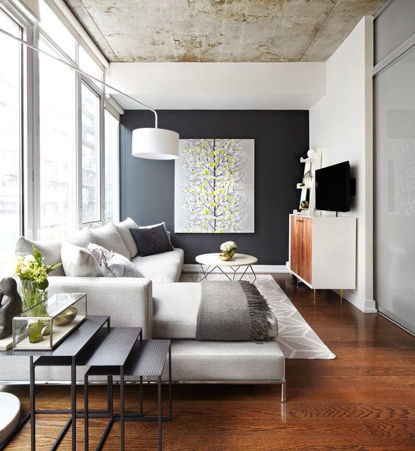 contemporary stylish living space