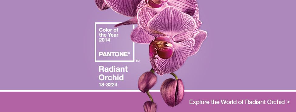 radiant_orchid_HomeSlider_Final.jpg