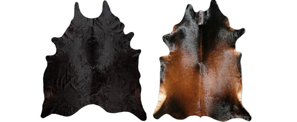 black brown.jpg