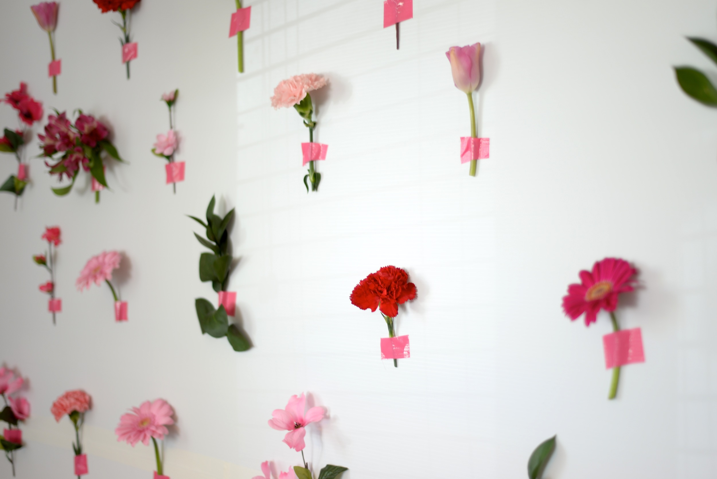 flower photo wall