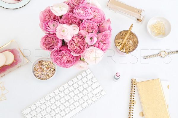 stylish stock photos