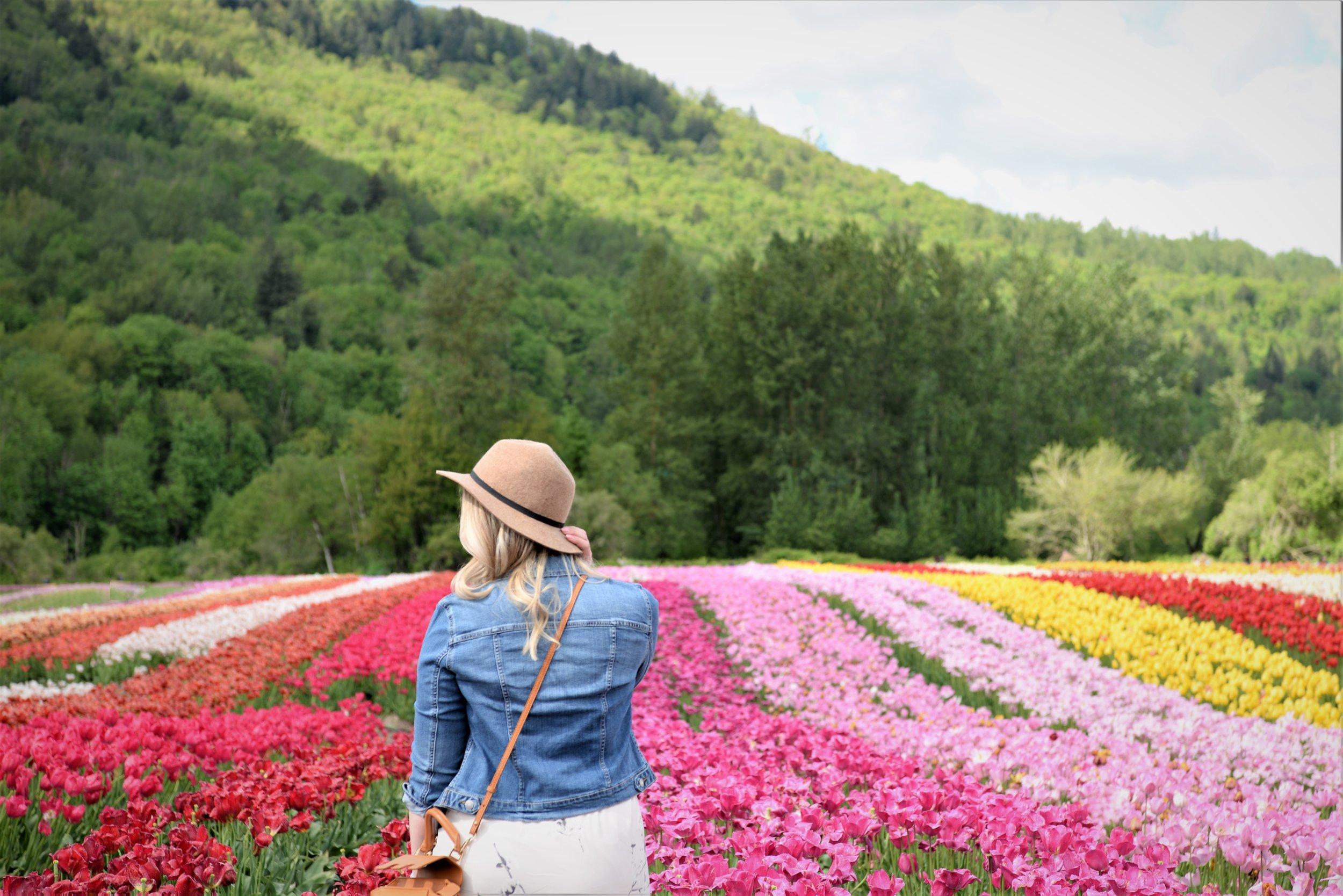 tulip festival canada