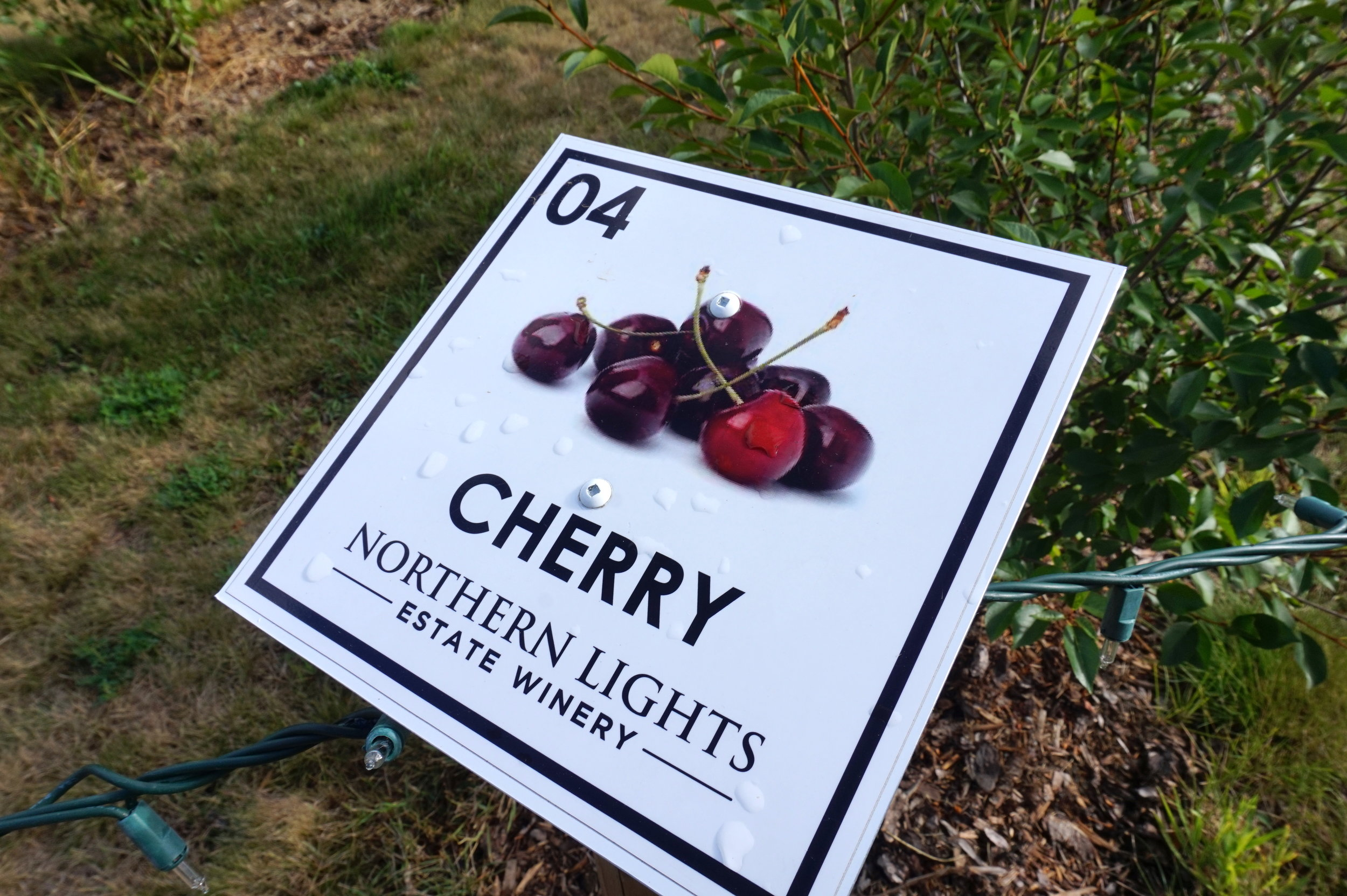 northern lights winery british columbia