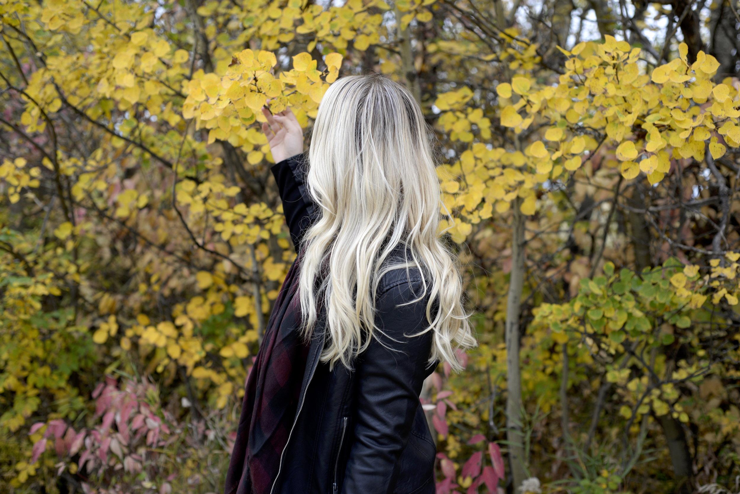fall leather jacket