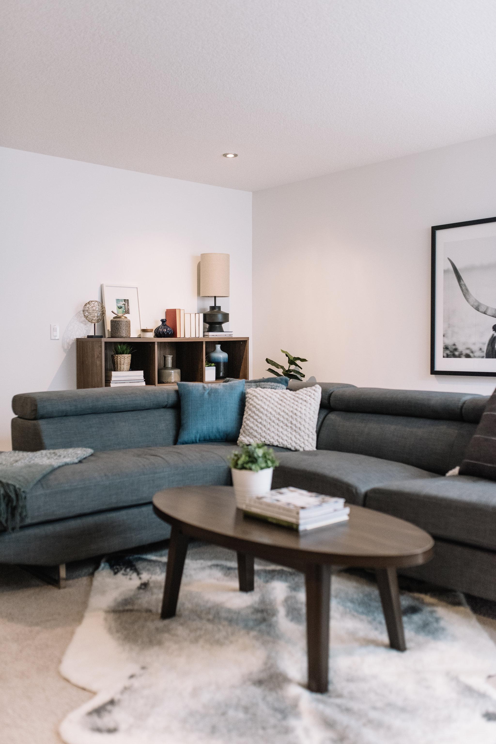 masculine minimalist basement