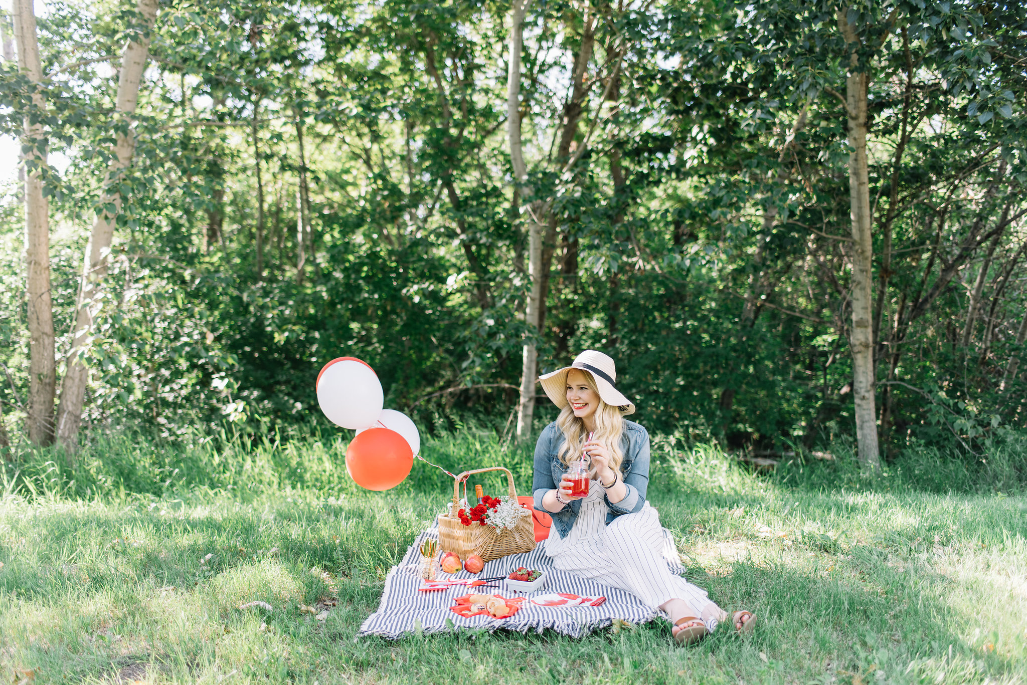 canada day picnic
