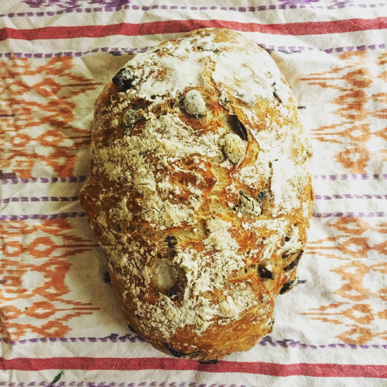 No Knead Dutch Oven Rosemary Olive Crusty Bread 🍞
