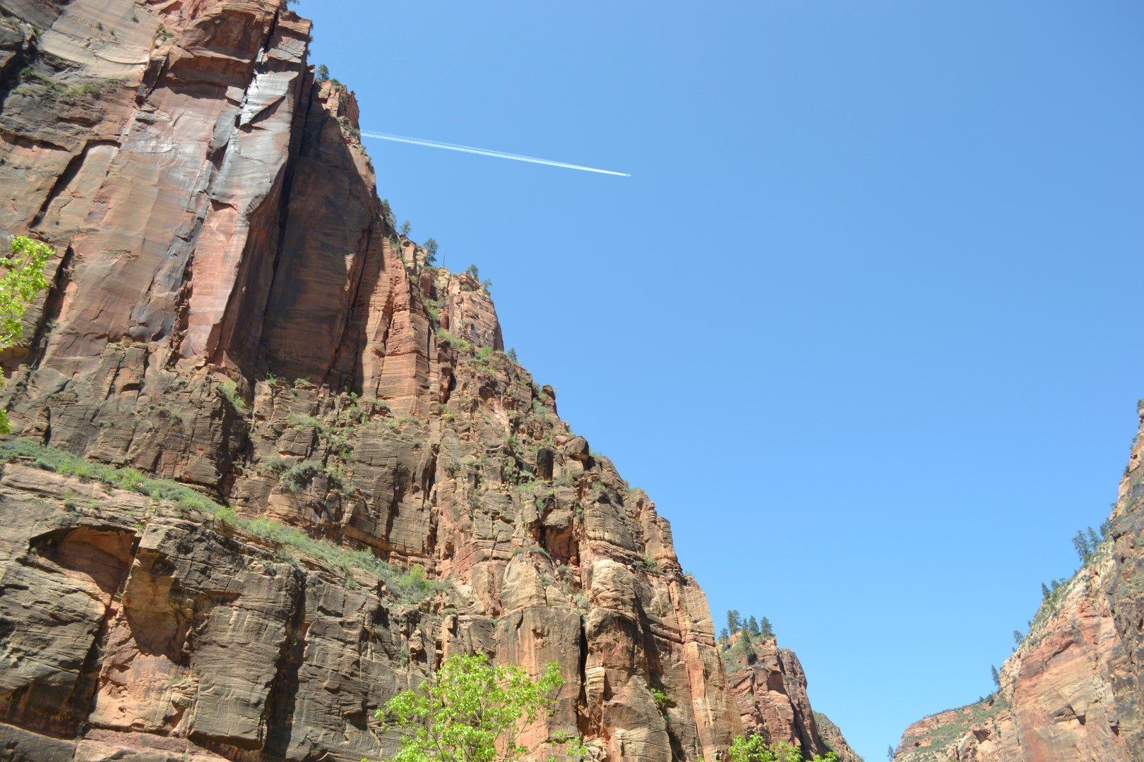 Zion National Park, photo: Andy Bruner
