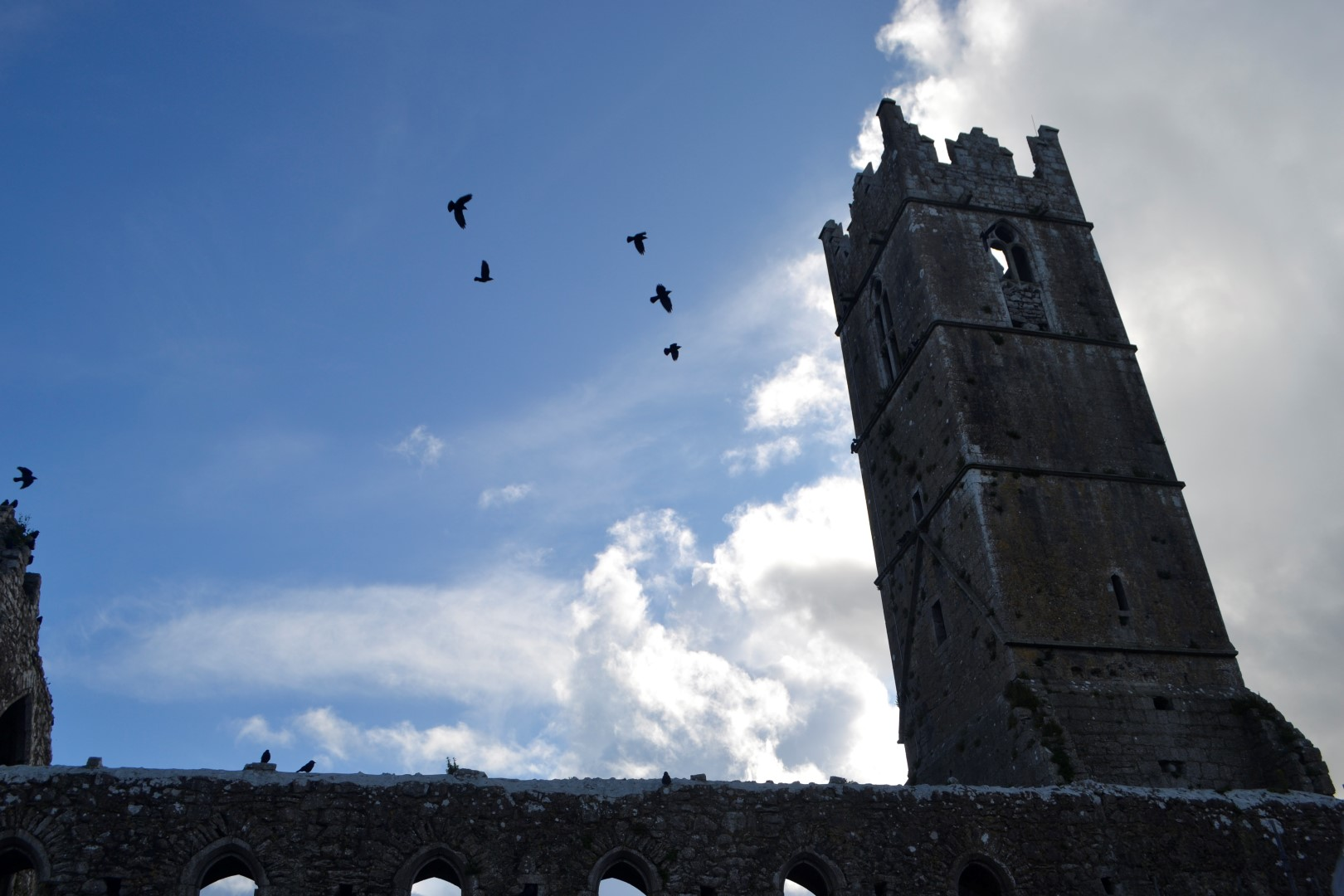 Clare Galway Fransciscan Priory, County Clare, Ireland, photo: Andy Bruner