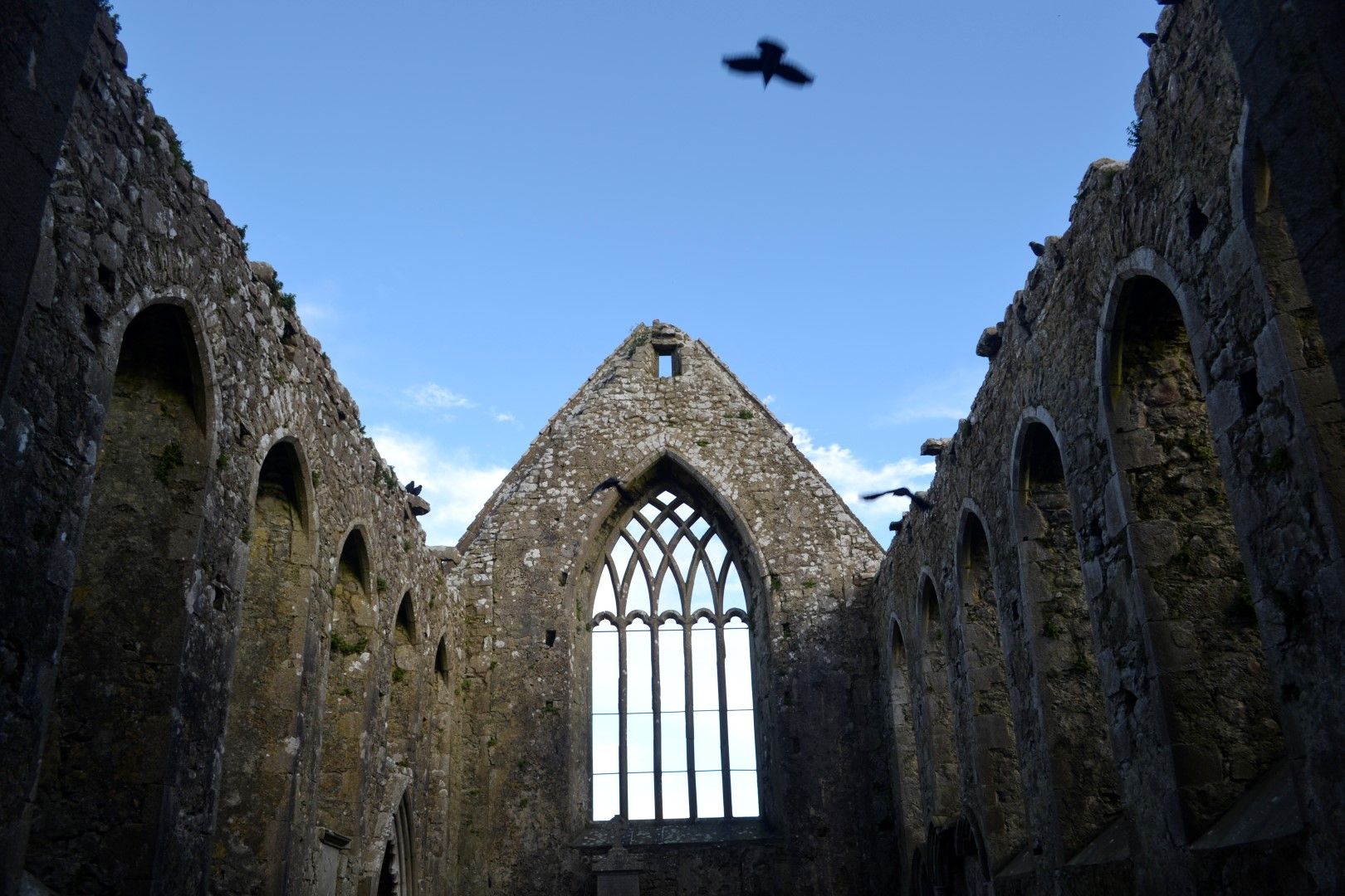 Clare Galway Friary, Ireland (photo:Andy Bruner)