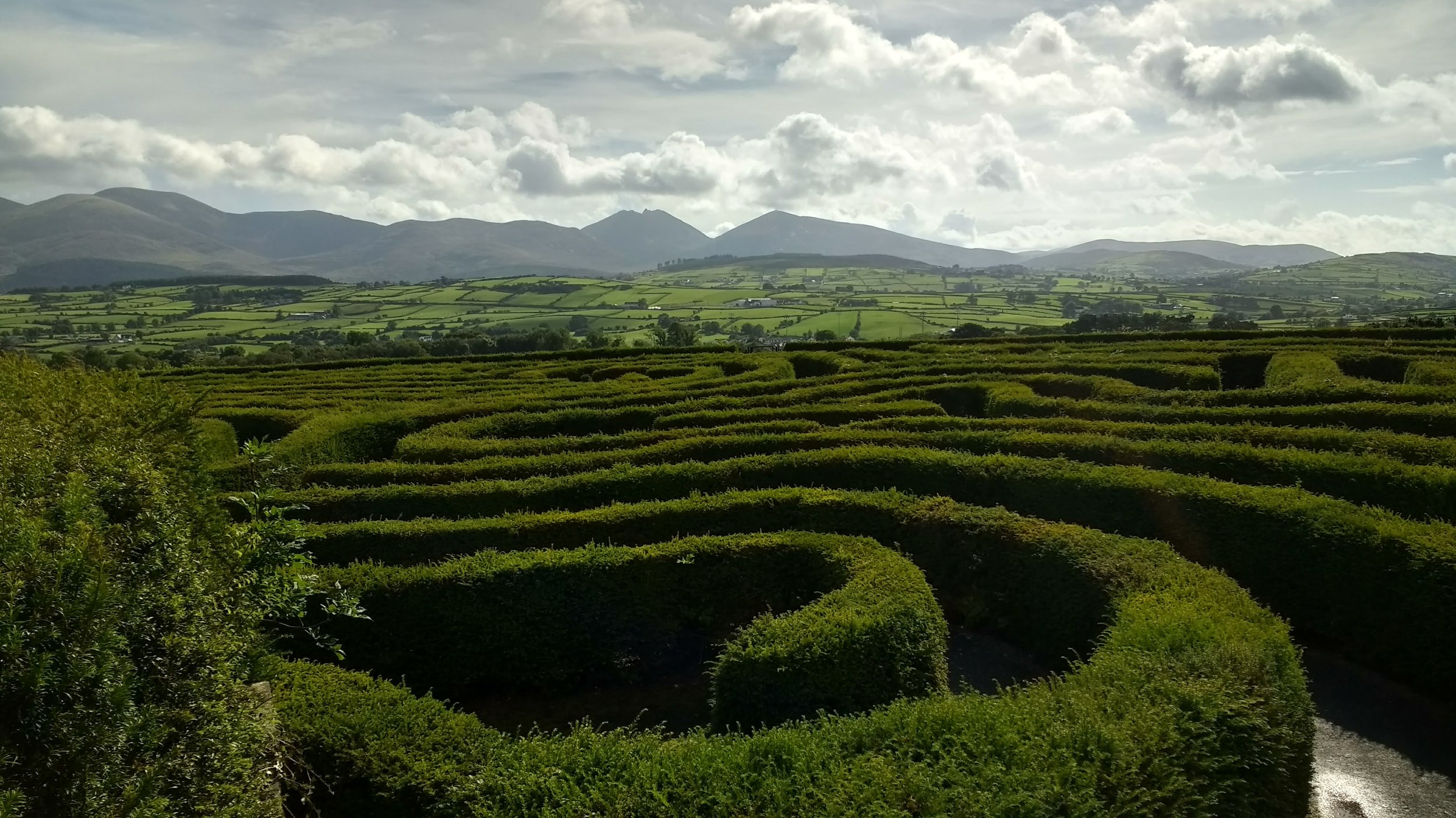 Peace Maze, Castlewellan, Northern Ireland (photo by me and my cell phone)