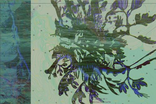 HA_seahoemapsv1.jpg