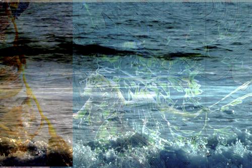 HA_seahoemapsv2.jpg