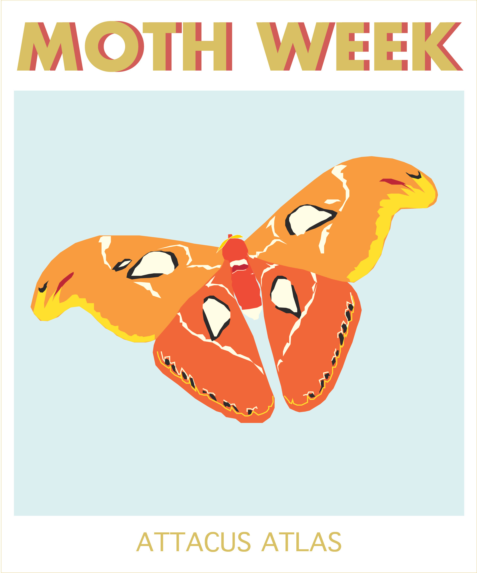 moth week atlas.jpg