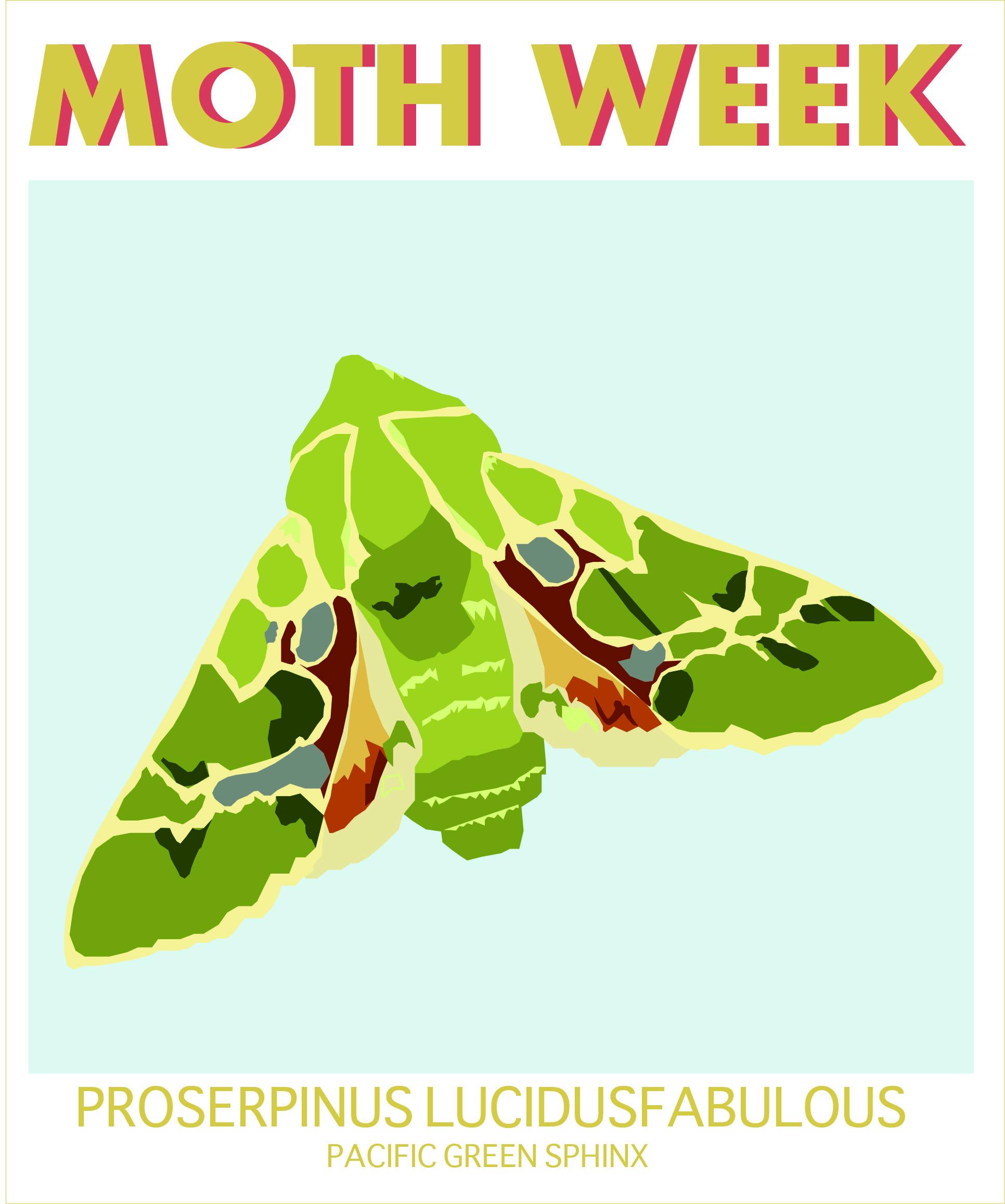 moth weekpacific green.jpg