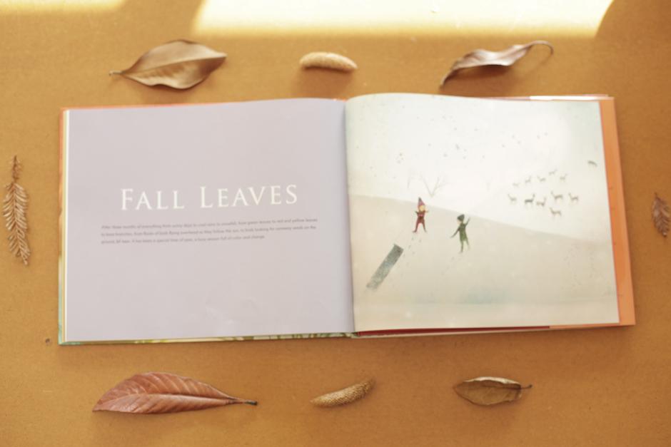 leavesfall4.jpg
