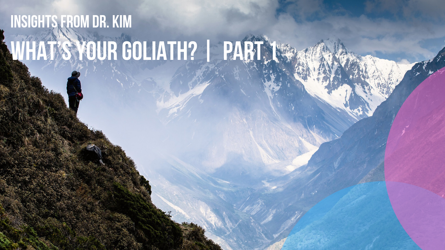 Insights from Dr. Kim_ What's Your Goliath_ _  Part 1.png