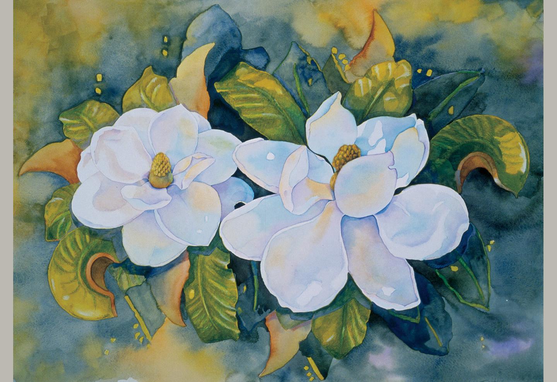Light on the Magnolias